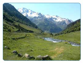 Cycle through lush valleys of Pyreneen foothills