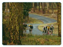 Cycling training camps - pine forests & Pyrenees passes beckon